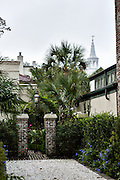 A private garden gate and old wall with palm trees in the French quarter of historic Charleston, SC.