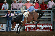 061408-Evergreen, CO-barebackriding-Bareback rider Tom Cardwell holds on tight during the bareback riding competition Saturday, June 14, 2008 at the Evergreen Rodeo Grounds..Photo By Matthew Jonas/Evergreen Newspapers/Photo Editor