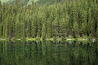 Spruce trees provide a backdrop for the calm waters of Rawson Lake in Peter Lougheed Provincial Park, Alberta, Canada