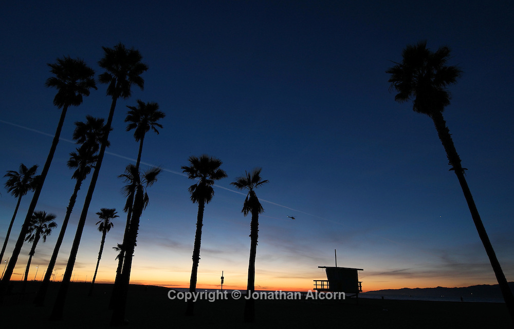 Venice Beach Palms January day with a high temperature of 76 degrees on January 15, 2015 in Venice, California