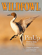 Wildfowl, Dec 2009