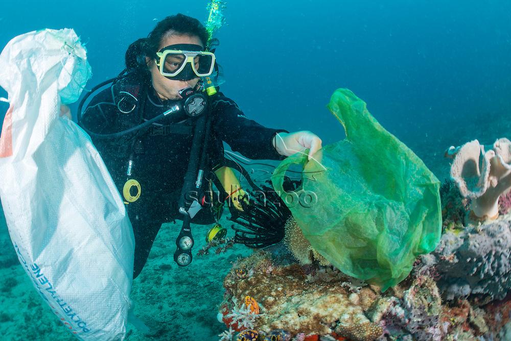 Reef clean, Mabul Island, Sabah, Malaysia, Borneo,