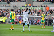 Wifried Bony of Swansea City can't hide his frustration.<br /> Barclays premier league match , Swansea city v Norwich city at the Liberty stadium in Swansea, South Wales on Saturday 29th March 2014.<br /> pic by Phil Rees, Andrew Orchard sports photography.