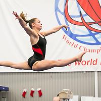 Bayley Barnett Gymnast