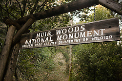Entrance sign hangs over trail to Muir Woods National Monument, Marin County, California, United States of America