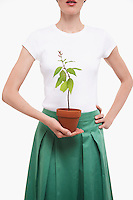 Woman Holding Potted Plant half length cropped