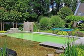 Natural pool 1066