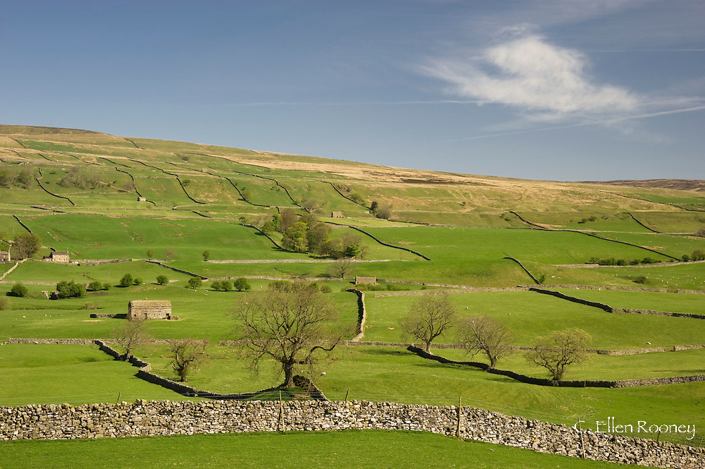 Stone barns and walls on a hillside near Bainbridge, Wensledale in The Yorkshire<br /> National Park, Yorkshire, England, UK