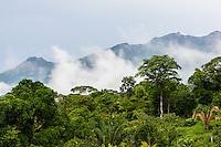 Low clouds settle over rainforest & Cerro Mariposa (Butterfly Mountain) around Casa Mariposa B&B; Santa Fe, Panama
