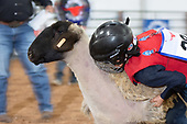 March 16, 2019 Mutton Bustin'