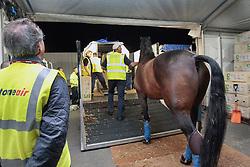 Victory Salute of Brett Parbery (AUS)<br /> Alltech FEI World Equestrian Games - Kentucky 2010<br /> © Dirk Caremans
