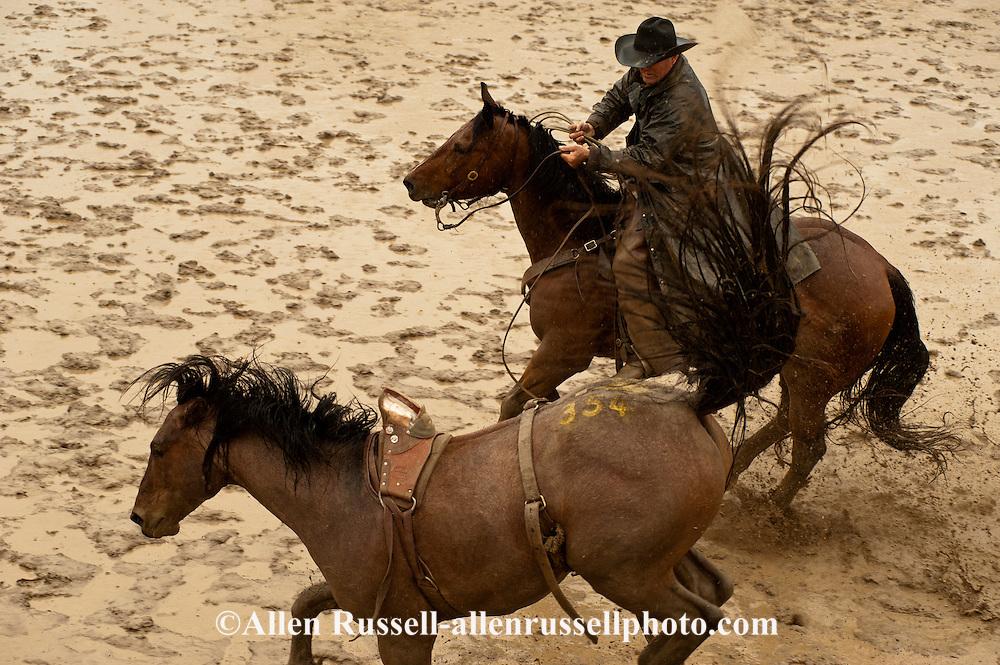 Pickup man Lynn Ashley, Bareback Bronc, Miles City Bucking Horse Sale, Montana