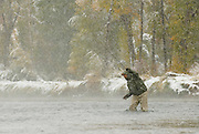 An angler fly fishes for trout during an autumn snowstorm on the South Fork of the Snake River, Idaho.