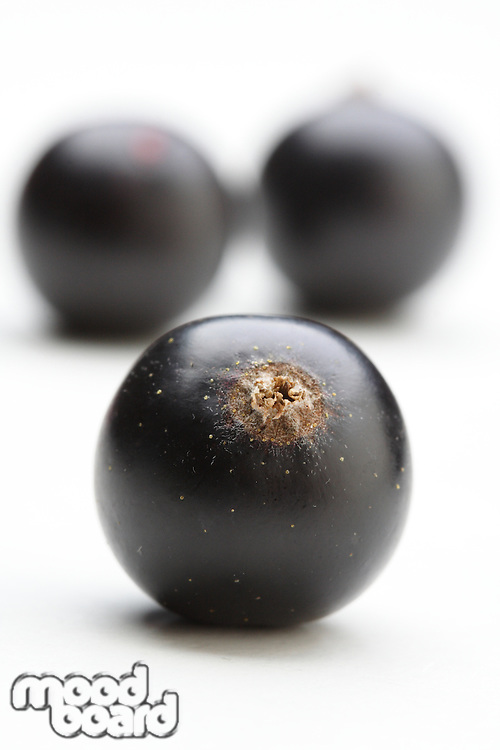 Close up of black currats