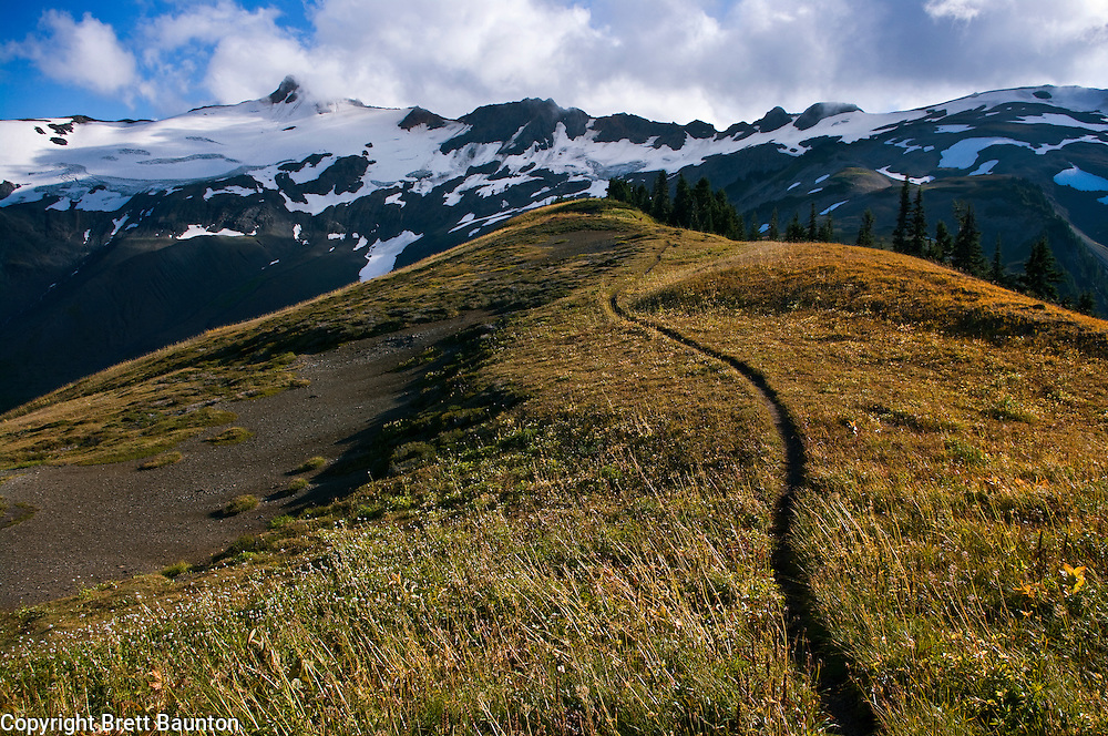 Trail, Alpine Ridge, Mt. Baker Wilderness Area, Washington State, Fall, Clouds