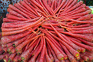 Red carrots displayed in a circle for sale at a market in Jaipur, Rajasthan, India