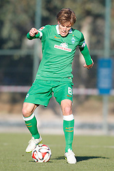 09.01.2015, Hotel Regnun Carya, Belek, TUR, FS Vorbereitung, Fussball Testspiel, SV Werder Bremen vs FC Energie Cottbus, im Bild Kapitaen Clemens Fritz (SV Werder Bremen #8) // during a international football frindly match between SV Werder Bremen vs FC Energie Cottbus at the Hotel Regnun Carya in Belek, Turkey on 2015/01/09. EXPA Pictures © 2015, PhotoCredit: EXPA/ Eibner-Pressefoto/ Schueler<br /> <br /> *****ATTENTION - OUT of GER*****