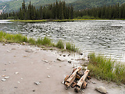 The remains of a an old mining truck at Horseshoe Lake, Denali National Park, Alaska. A cow moose and calf are in the background, upper middle.