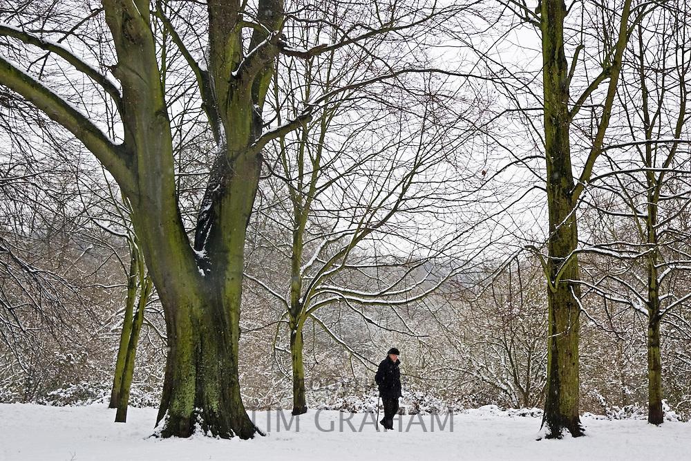 Lone walker on snow-covered Hampstead Heath, North London, United Kingdom