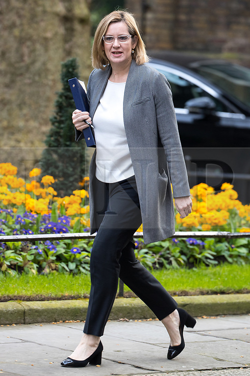 © Licensed to London News Pictures . 29/03/2017 . London , UK . AMBER RUDD arrives . Ministers arriving and leaving for a Cabinet meeting and Prime Minster's Questions , at 10 Downing Street , Westminster . Today (29th March 2017) the British Government will trigger Article 50 of the Lisbon Treaty and commence Britain's withdrawal from the European Union . Photo credit : Joel Goodman/LNP