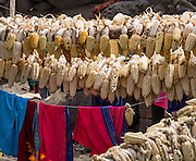 Day 1 of 10: Corn cobs hang to dry in Huaripampa Valley, near Vaqueria, Cordillera Blanca, Andes Mountains, Peru, South America.