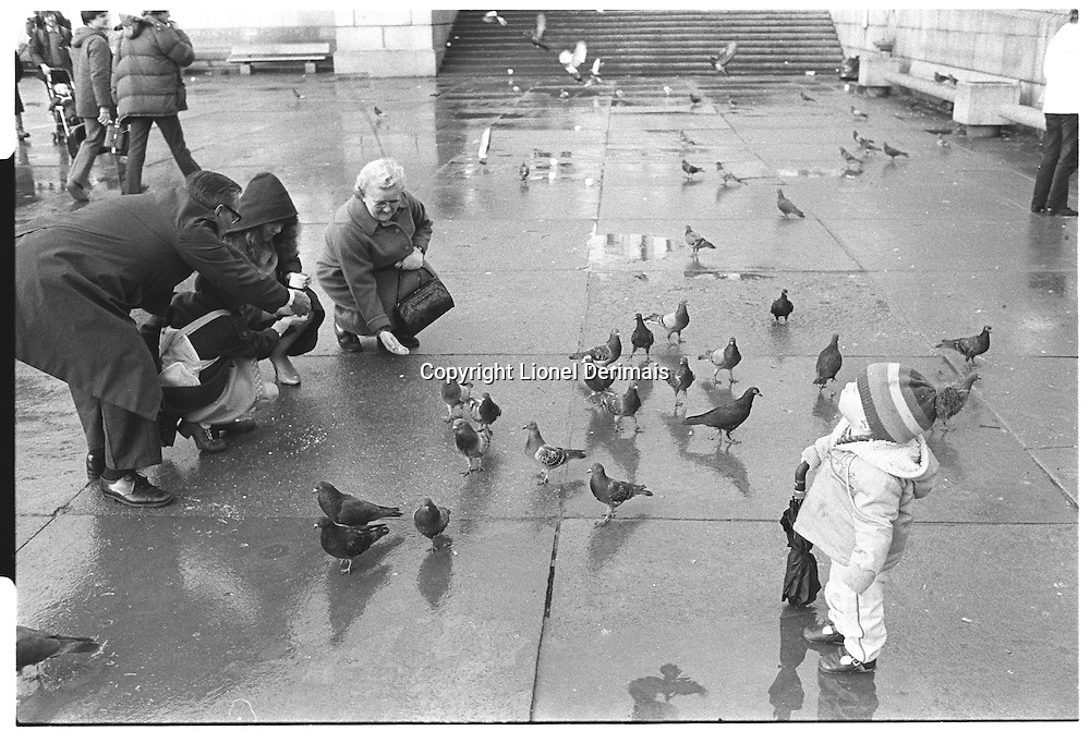 Child holding umbrella looking at pigeons in the sky while his parents feed pigeons on the ground, Trafalgar Square, London street photography in 1982. Tri-X