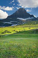 Alpine meadows of logan Pass below Mount Reynolds, Glacier National Park Montana USA
