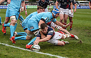Jamie Stevenson scores a try during the Green King IPA Championship Play-Off match between London Scottish &amp; Worcester at Richmond, Greater London on Saturday 2nd May 2015<br /> <br /> Photo: Ken Sparks | UK Sports Pics Ltd<br /> London Scottish v Worcester, Green King IPA Championship, 2nd May 2015<br /> <br /> &copy; UK Sports Pics Ltd. FA Accredited. Football League Licence No:  FL14/15/P5700.Football Conference Licence No: PCONF 051/14 Tel +44(0)7968 045353. email ken@uksportspics.co.uk, 7 Leslie Park Road, East Croydon, Surrey CR0 6TN. Credit UK Sports Pics Ltd