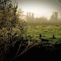 Looking across Dove meadow towards Eye Church, Suffolk, England.