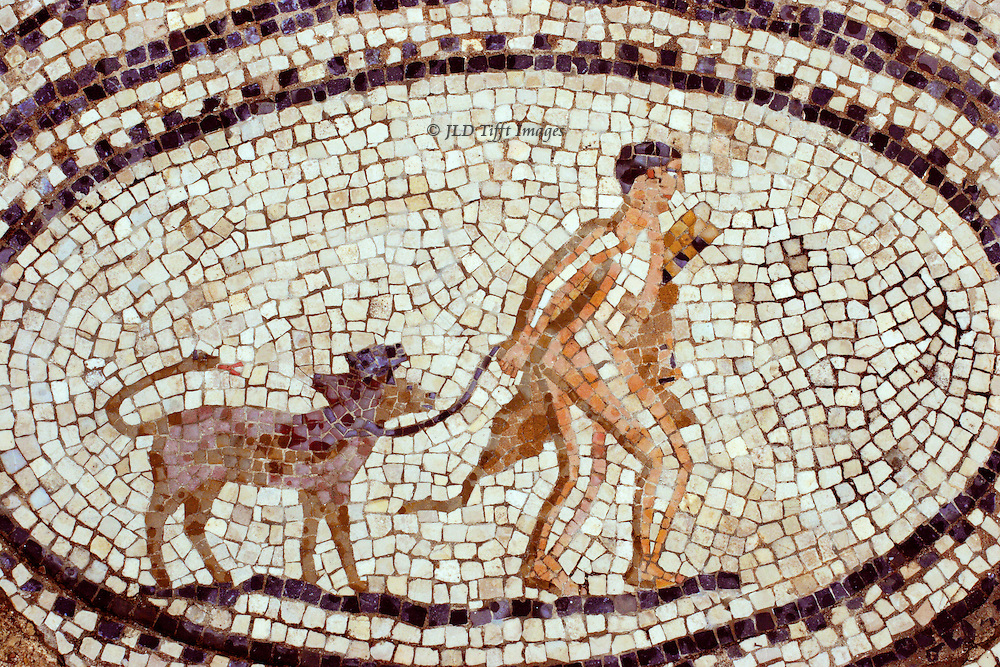 "Volubilis, provincial Roman city in Morocco with many floor mosaics still in situ. Mosaic details from the ""House of Orpheus.""  Medallion showing Hercules leading the Cretan Bull (7th labor) -- the bull seeming quite tame and small.  Awkward provincial style."