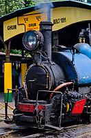 Inde, Bengale Occidental, Darjeeling, gare de Ghum, avec le célebre toy train du Darjeeling Himalayan Railway, Patrimoine Mondial de l'Unesco // India, West Bengal, Darjeeling, Ghum train station for the toy train from Darjeeling Himalayan Railway, Unesco world Heritage