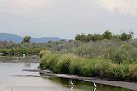 Monte Vista National Wildlife Refuge, Colorado