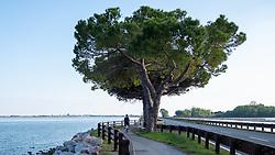 Themenbild - Kaum eine andere Region Italiens ist dermaßen geprägt vom Tourismus wie die Küstenregionen der oberen Adria. In den Hauptbadeorten Grado, Lignano, Bibione, Caorle, Jesolo, Marina die Venezia und auf der Isola Albarella drängen sich jedes Jahr aufs neue wahre Touristenmassen am Strand. Hier im Bild Alpe Adria Radweg. Grado, Italien am Montag, 15. April 2019 // Preseason on the upper Italian Adria. Hardly any other region of Italy is as influenced by tourism as the coastal regions of the upper Adriatic. In the main seaside resorts of Grado, Lignano, Bibione, Caorle, Jesolo, Marina the Venezia and on the Isola Albarella, every year new masses of tourists crowd the beach. Picture shows Alpe Adria bike path. Grado, Italy on Italy on Monday, April 15, 2019. EXPA Pictures © 2019, PhotoCredit: EXPA/ Johann Groder