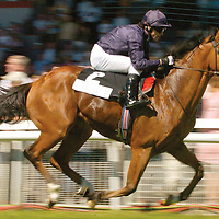 7 August 2005; George Washington, with Kieran Fallon up, on their way to winning the Independent Waterford Wedgwood Phoenix Stakes. Curragh Racecourse, Co. Kildare. Picture credit; Matt Browne / SPORTSFILE