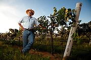 Greg Bruni, winemaker, 2009.