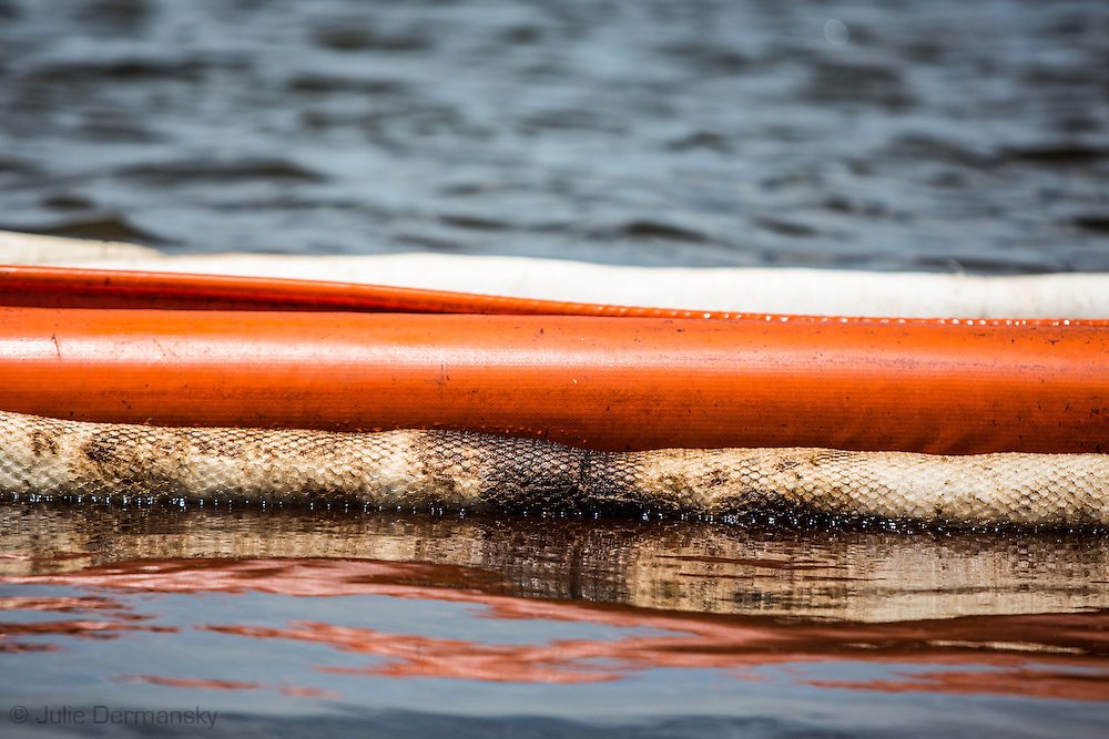 Crude oil on boom used to contain the Hilcorp oil spill.  An estimated 4,200 gallons of crude oil attributed to oil and gas extraction company Hilcorp spilled in the marsh near Lake Grande Ecaille, part of Barataria Bay, on July 25.