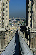 France. Paris elevated view from Notre dame cathedral. the towers  of Notre dame cathedral view from the spire