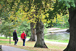 © Licensed to London News Pictures. 02/10/2018<br /> TUNBRIDGE WELLS, UK.<br /> An Autumn walk in the park.<br /> A bright autumnal weather afternoon at Dunorlan Park, Royal Tunbridge Wells, Kent.<br /> Photo credit: Grant Falvey/LNP