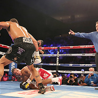 NEW ORLEANS, LA - JULY 14:  Regis Prograis knocks down Juan Jose Velasco during their WBC Diamond Super Lightweight Title boxing match at the UNO Lakefront Arena on July 14, 2018 in New Orleans, Louisiana.  (Photo by Alex Menendez/Getty Images) *** Local Caption *** Regis Prograis; Juan Jose Velasco