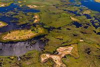 Aerial view, Okavango Delta, Botswana.