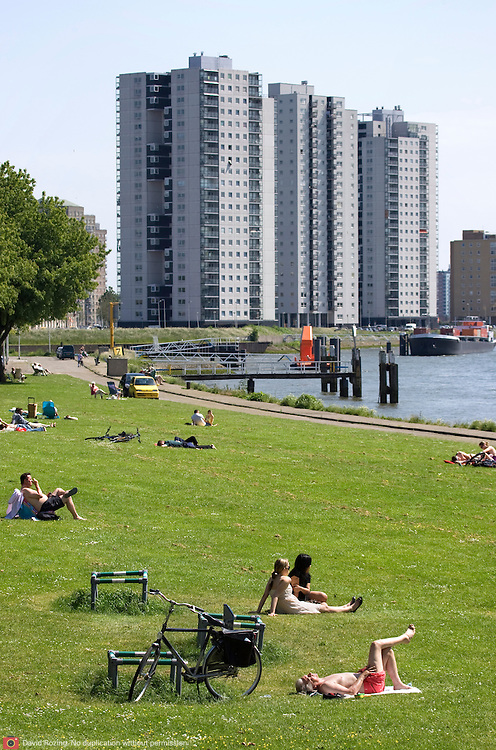 Nederland Rotterdam 24-05-2009 20090524 Foto: David Rozing .                                                                                    .Mensen genieten van zomerweer, zonnen op grasveldje Kralinger Esch                             .People  enjoying sunny weather in parc, citylife          .Holland, The Netherlands, dutch, Pays Bas, Europe ..Foto: David Rozing