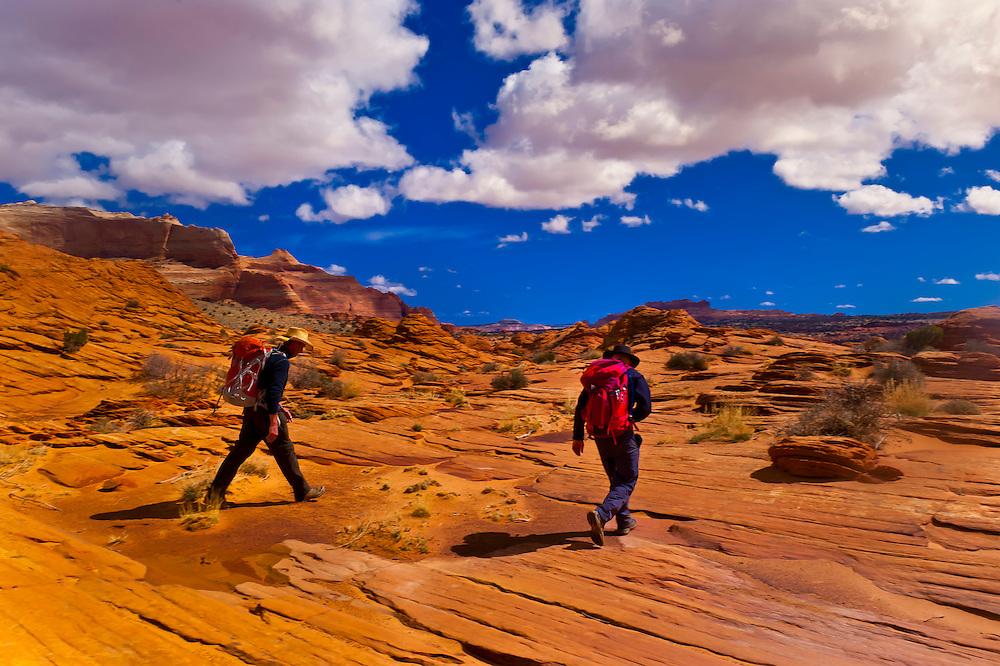 Hiking in Coyote Buttes North, Paria Canyon-Vermillion Cliffs Wilderness Area, Utah-Arizona border, USA
