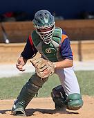Indiana Elite Boys Junior 1A Baseball