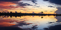 MIAMI, FLORIDA - CIRCA SEPTEMBER 2018:  Panoramic view of a sunset over the Florida Everglades near Miami.