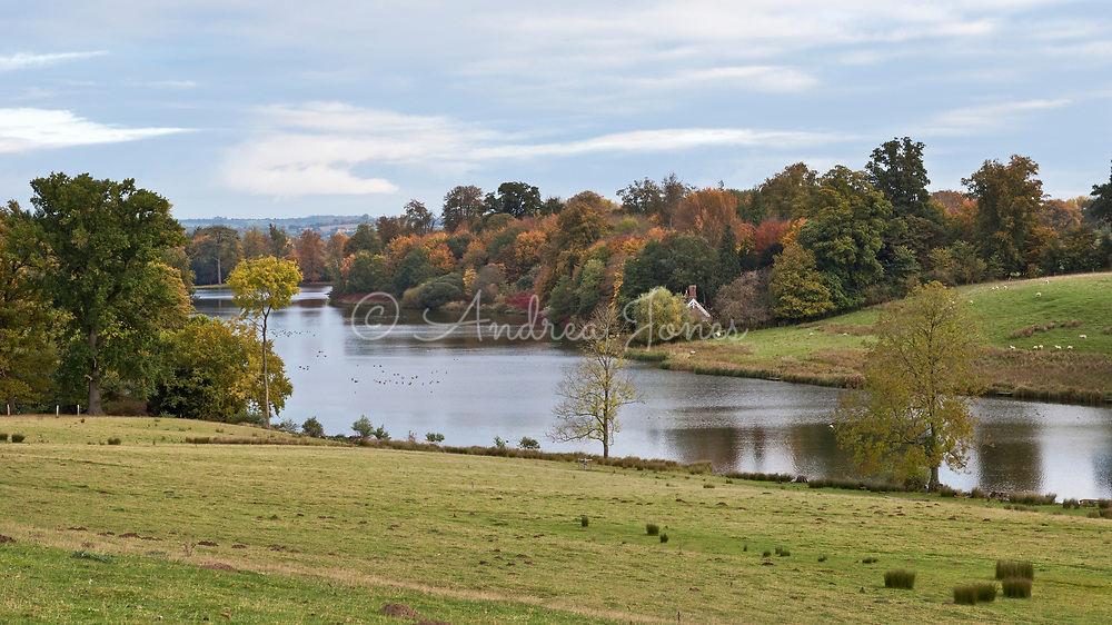 The Capability Brown designed landscape and lake in autumn at Bowood House, Wiltshire, England