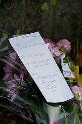 © Licensed to London News Pictures. 27/11/2010 Borehamwod, UK. .Flowers at Beech Drive, Borehamwood, Hertfordshire, where babysitter Katie Briscoe, 19 was stabbed to death while looking after her nephew and neice..Photo credit : Simon Jacobs/LNP