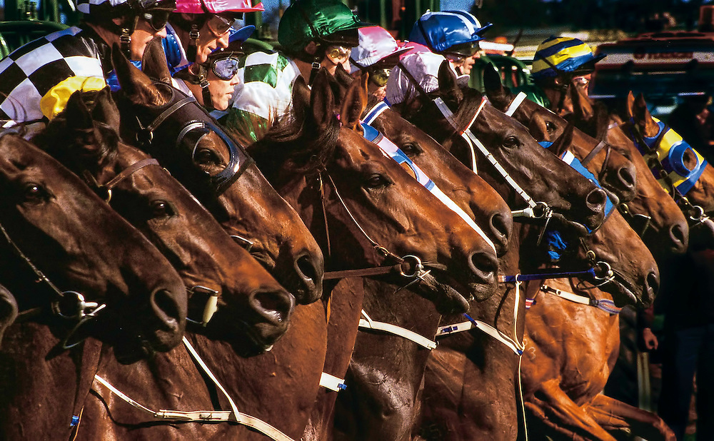 106 The Age of Racing: They jump as one ... The field breaks for the 1997 Caulfield Cup. And 2400metres later, Might And Power had not only won by 7.5 lengths, but set a record of two minutes 26.2 seconds. He was, said some, the most exciting stayer in the world, and his subsequent performances gave more credence to the claim. Among the wins that followed were the Melbourne Cup, also in 1997, and the Cox Plate, in 1998.<br /> Picture: Craig Sillitoe.<br /> fairfaxphotos.com This photograph can be used for non commercial uses with attribution. Credit: Craig Sillitoe Photography / http://www.csillitoe.com<br />