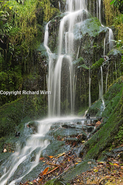 Close-up view of the large cascade in Hestercombe Gardens.