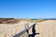 Path with fence at Coast Guard Beach, Cape Cod National Seashore
