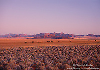 "Namibia's Namib Rand, the second location we will visit during our ""Surreal Namibia"" photography workshop, is a uniquely beautiful and unusual landscape. However it is around sunrise or sunset that the truly magical happens. The colors here need to be seen to be believed"